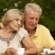 Cute older couple sitting on veranda — Stock Photo #32397293