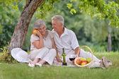 高齢者夫婦の幸せ — ストック写真