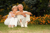 Loving elderly couple in the park — Stock Photo