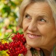 Nice old womholding rowan — Stock Photo #32400365