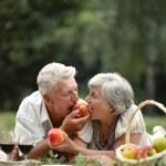 Happy aged couple — Stock Photo #32401231