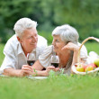 Loving mature couple — Stock Photo #32401315