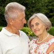 Stock Photo: Glorious elderly couple in park
