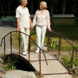 Nice elderly couple  in the garden — Photo