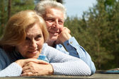 Pleasant old people — Stock Photo
