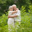 Senior pair in park — Stock Photo