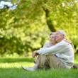 Elderly couple in nature — Stock Photo #32463807