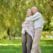 Adorable elderly couple went in the park — Stock Photo