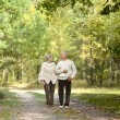 Old couple at park — Stock Photo