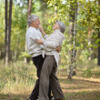 Old couple at park — 图库照片