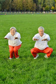 Sportive elderly couple — Stock Photo