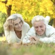 Happy senior couple — Lizenzfreies Foto