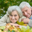 Stock Photo: Happy older couple