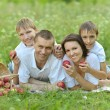 Family having picnic — Lizenzfreies Foto