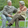Stock Photo: Beautiful elder couple