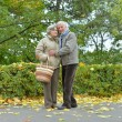 Happy old couple — Stock Photo