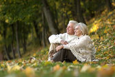 Old people sitting in the autumn park — Stock Photo