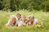 Family having a picnic — Stock Photo