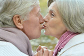 Handsome elderly couple — Stock Photo