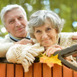 Senior couple stand at fence — Stock Photo