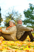 Portrait of older couple — Stock Photo