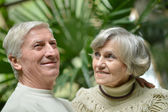 Senior couple in orchard — Stock Photo