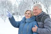 Senior couple in winter — Stock Photo