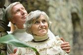 Mooi ouderen paar op de muur — Stockfoto