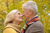 Happy old couple — Stock Photo