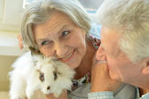 Senior couple with white rabbit — Stock Photo
