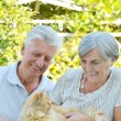 Nice elderly couple — Stock Photo