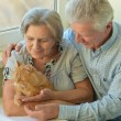 Happy elderly couple at home — Stock Photo