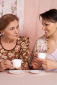 A beautiful happy older woman with her adult daughter — Stock Photo