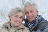 Senior koppel in de winter — Stockfoto