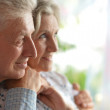 Close-up portrait of a happy senior couple at home — Stock Photo