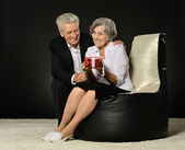 Senior couple celebrating holiday — Stock Photo