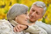 Nice senior couple — Stock Photo