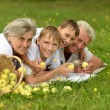 Happy family having a picnic on a sunny summer day — Stock Photo