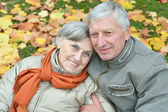 Heureux couple senior, promenade dans le parc — Photo
