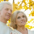 Stockfoto: Senior couple in autumn park
