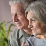 Portrait of a happy senior couple — Stock Photo
