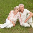 Charming elderly couple went to the nature — Stock Photo