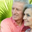 Stock Photo: Glad old  people at resort