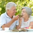 Elderly couple in summer — Stock Photo #42391641