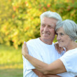 Elderly couple in park — Stock Photo #42391781