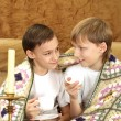 Stock Photo: Brothers drink tea at home