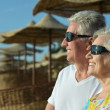 Amusing elderly couple on a beach — Stock Photo #42392151