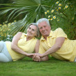 Stock Photo: Elderly couple in nature
