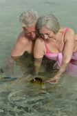 Casal de idosos alimentando os peixes — Fotografia Stock