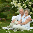 Happy elder couple — Stock Photo